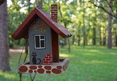 The original house for birds on a tree branch in the city Park.  royalty free stock photo
