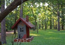 The original house for birds on a tree branch in the city Park.  stock photo