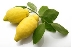 Lemon of Sorrento on white background. Original lemon of Sorrento on white background Royalty Free Stock Photos