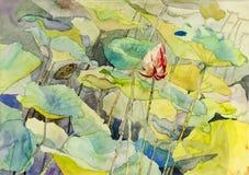Original- målning för vattenfärglandskap som är färgrik av lotusblomma Royaltyfri Bild