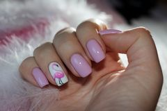 Original nails with a pattern of flamingos Stock Photography