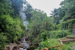 Original nature of the caribbean. The sulfur springs inside the densely forested Caribbean island of Dominica Royalty Free Stock Image