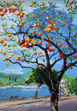 Orange tree oil painting in Greece stock illustration
