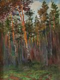 Original oil painting of pine trees and bushes Forest Impressionism Art concept. A dense pine forest in the rays of the sunset Royalty Free Stock Photo