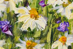 Painting of white daisies flowers, beautiful field flowers on canvas. Palette knife Impasto artwork. Original oil painting of white daisies flowers, beautiful Royalty Free Stock Image