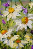 Painting of white daisies flowers, beautiful field flowers on canvas. Palette knife Impasto artwork. Original oil painting of white daisies flowers, beautiful Royalty Free Stock Photo