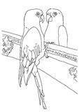Original outline drawing of a parrot Royalty Free Stock Photos