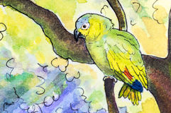 Original painting of an Amazon parrot. Original watercolor painting of an Orange-winged Amazon parrot perching in a tree Stock Photo