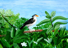 Original painting of a beautiful Myna on a tree. Original acrylic painting of a Indian Myna sitting on a tree Royalty Free Stock Photos