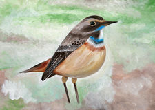 Original painting of Bluethroat Stock Images