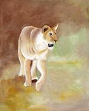 Original painting of a lioness of Masai Mara National park, kenya Royalty Free Stock Photos