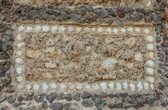 Original- rektangel av snäckskal och flottasvampar på en stenwa Royaltyfria Bilder