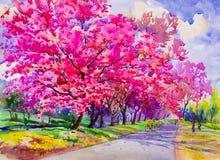 Original- rosa röd färg för målningvattenfärglandskap av den lösa himalayan körsbäret royaltyfri illustrationer