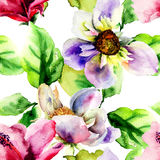 Original seamless wallpaper with wild flowers Royalty Free Stock Images