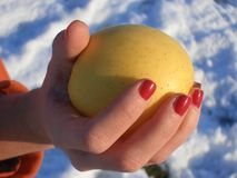 Original sin. Hand holding a yellow apple Stock Photos