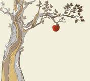 Original sin. Tree with apple Stock Image