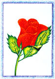 Original sketch of beautiful red rose Stock Photo