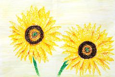 Original sketch of beautiful sunflowers Royalty Free Stock Images