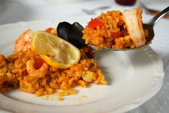 Original spanish Paella Stock Images