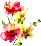 Original Summer flowers Royalty Free Stock Images