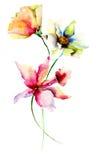 Original Summer flowers Stock Photo