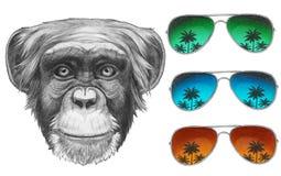 Original- teckning av apan med spegelsolglasögon stock illustrationer