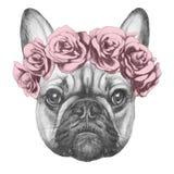 Original- teckning av den franska bulldoggen med rosor royaltyfri illustrationer