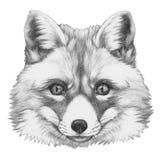 Original- teckning av räven stock illustrationer