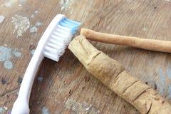 Original toothbrush miswak with modern toothbrush Royalty Free Stock Photo