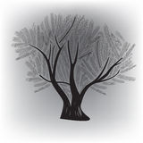 Original tree. For various application Royalty Free Stock Image