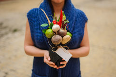 The original unusual edible vegetable and fruit bouquet  with card  in girl hands Stock Photography