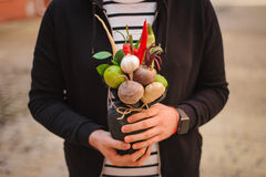 The original unusual edible vegetable and fruit bouquet  in man hands Royalty Free Stock Photography