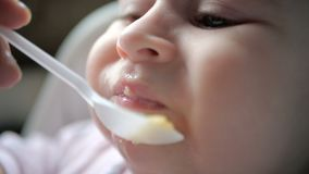 Little baby eating porridge from a plastic spoon indoors in slow motion. Original view of a Caucasian seven month baby eating porridge from a plastic spoon being stock video