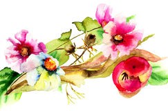 Original watercolor illustration Royalty Free Stock Images