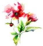 Original watercolor illustration Royalty Free Stock Photos