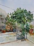 Original watercolor landscape corner of small garden Royalty Free Stock Photos