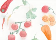Different vegetables: carrots, peppers. Original watercolour illustration of vegetables: carrots, peppers, chilly peppers tomatoes, parsley Royalty Free Stock Images