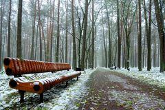 Original wooden bench in the city park at the beginning of winter. Original wooden bench along the road in the city park in the winter cloudy morning Royalty Free Stock Photos