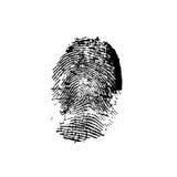 Originale dell'impronta digitale Fotografie Stock