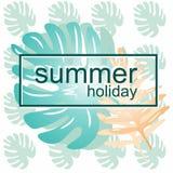 Originale, juteux, carte d'été sur le ` d'été de ` de thème illustration stock