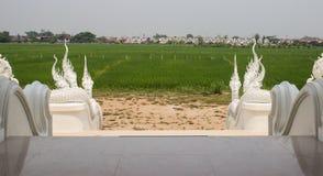 Origine del Naga del tempio asiatico immagini stock libere da diritti