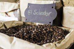 Origine di El Salvador dei chicchi di caffè Fotografia Stock Libera da Diritti