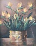 Origineel olieverfschilderij op canvas - Stilleven met Strelitzia-Reg. royalty-vrije illustratie