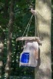 Originele die vogelvoeder, met de hand van plastic fles, stuk wordt gemaakt van royalty-vrije stock afbeelding