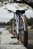 Originele ontworpen fiets Royalty-vrije Stock Afbeeldingen