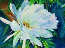 Originele realistische het schilderen bloemenbloei bij nacht van pioenbloem Stock Foto