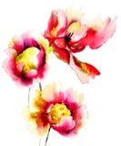 Originele rode bloemen Stock Afbeeldingen