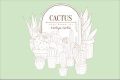 Originele uitstekende schets met verschillende types van cactussen in potten Kader met plaats voor tekst Huisinstallaties Plantku royalty-vrije illustratie