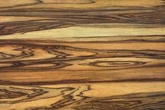 originellt texturträ för bakgrund Royaltyfri Fotografi