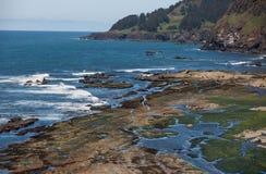 Orilla costera rocosa de Oregon fotos de archivo